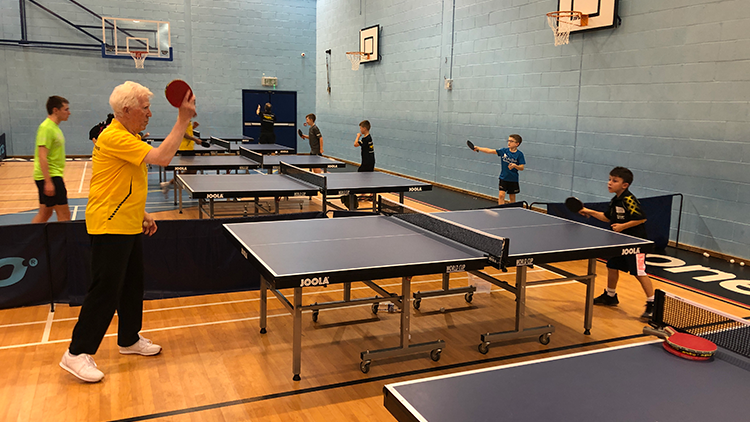 adult table tennis coaching